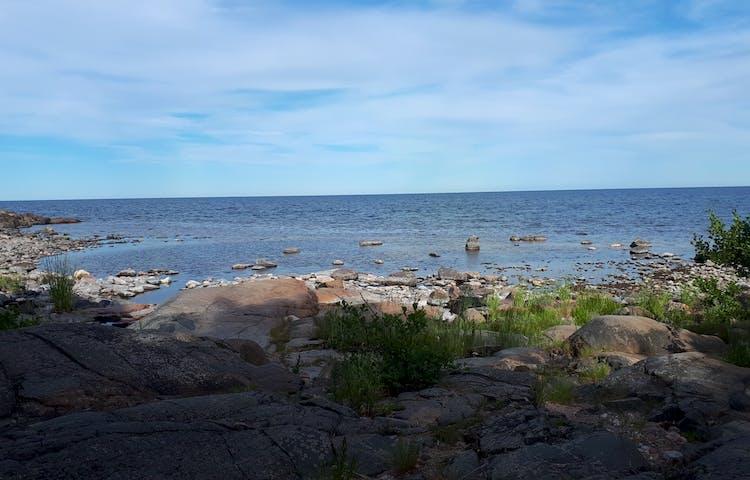Tullviksbäckens mynning Foto: Kjell Andersson
