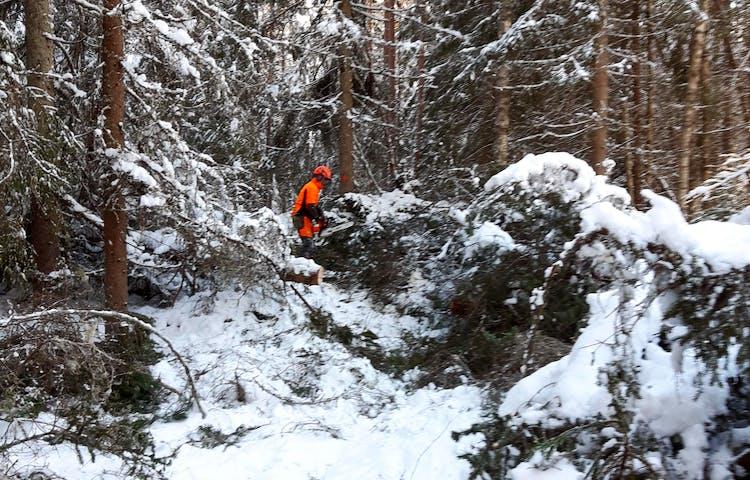 En person i varselkläder som står i en snöig skog.