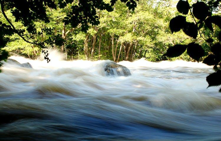 Vattnet forsar fram i hög hastighet i ån.
