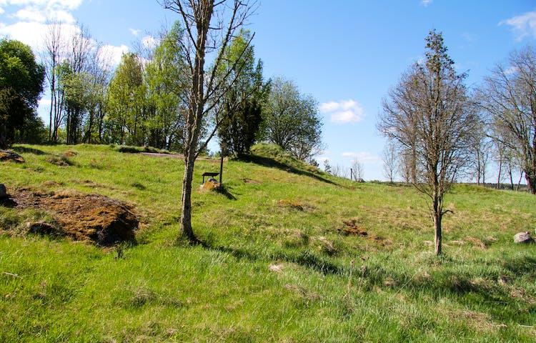I området finns flera klipphällar med hällristningar, det finns också gravar och andra platser där människor bodde på bronsåldern.