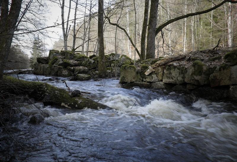 Käringahejans Naturreservat.