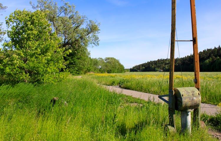 En bred och jämn grusväg med en äng på ena sidan och strandäng med vass på andra sidan löper längs med Fyrisån.