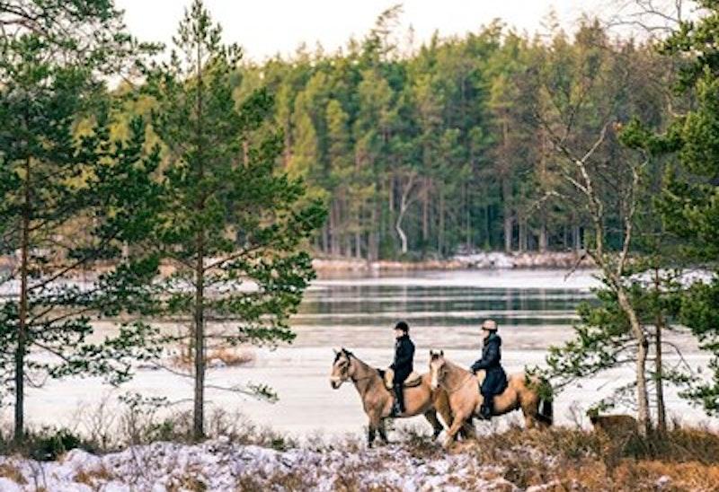 2-days in Tiveden National Park on horseback and in kayak